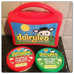 Dairylea New Flavours: Mighty Mature and Springy Onion