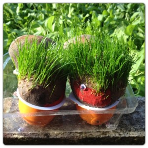 Family of Grass Heads