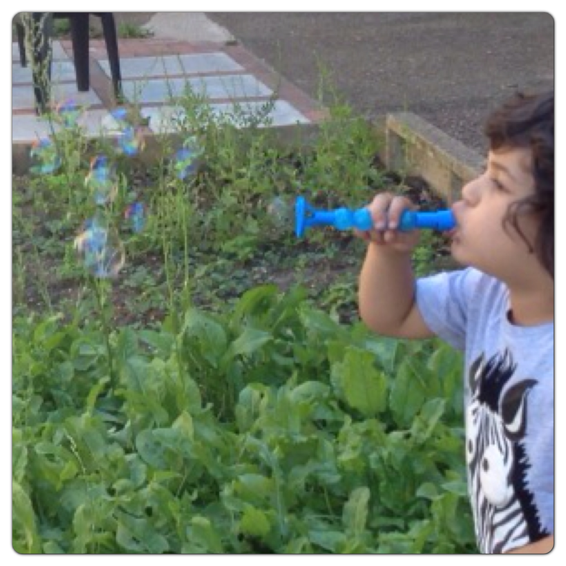 Kazoo Bubble Blower