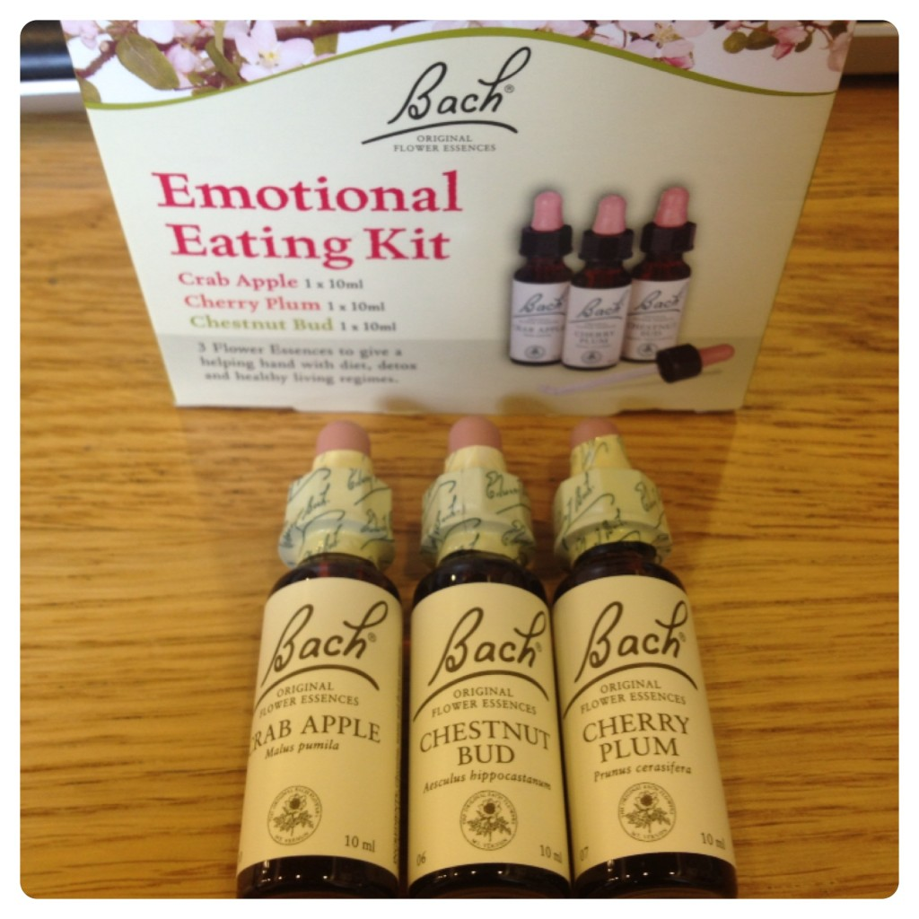 Bach Emotional Eating Kit