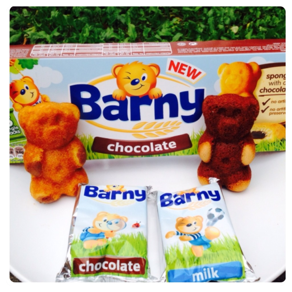 Barny - Bear Shaped Cake