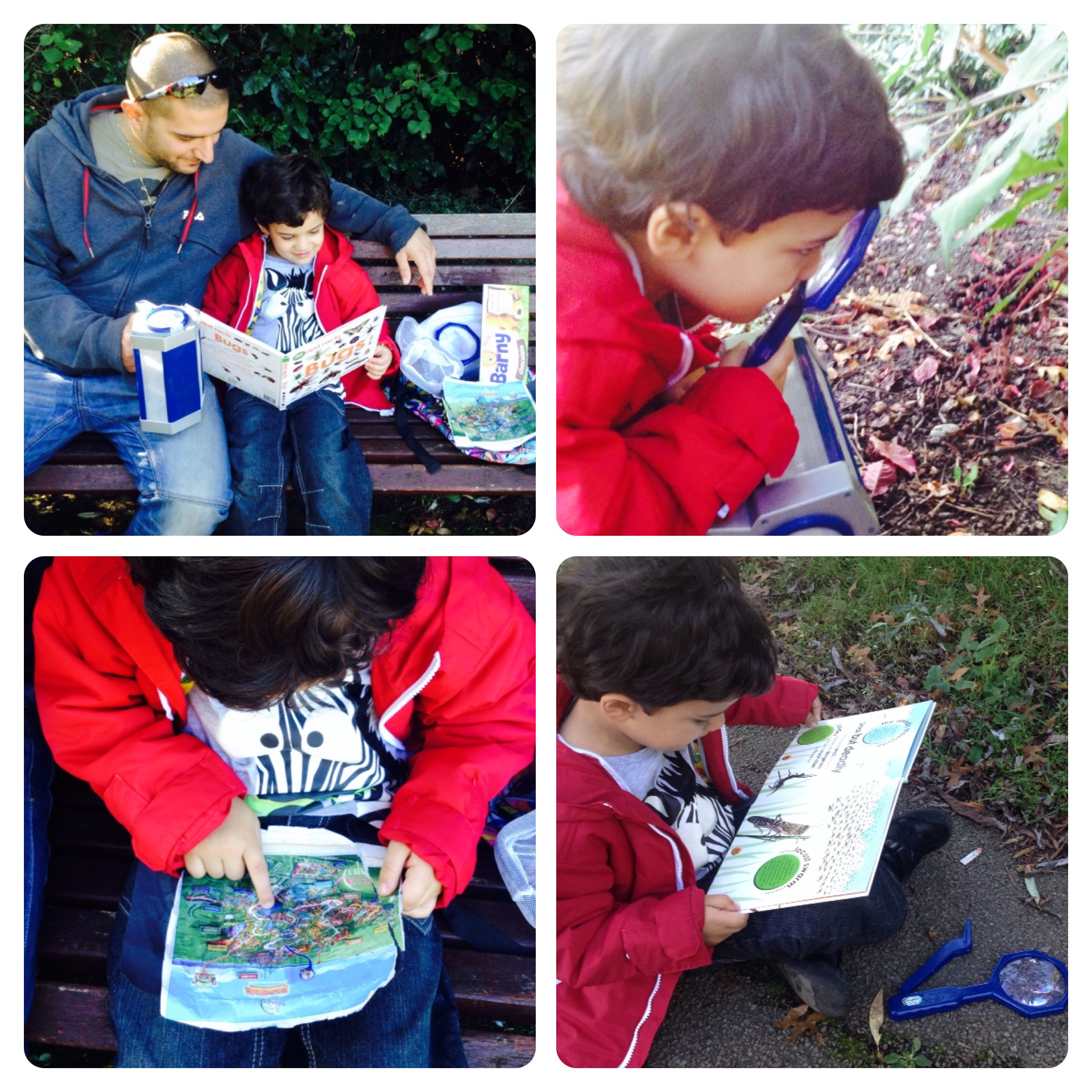 Little Adventures: Insects and Bugs Hunt