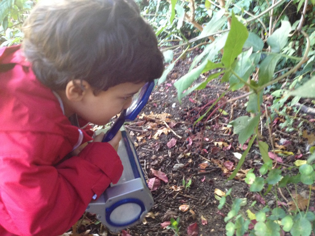 Family Fun: Exploring Nature