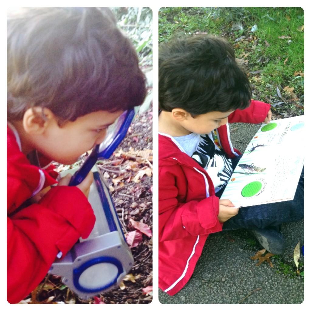 Exploring Nature: Bug Hunt