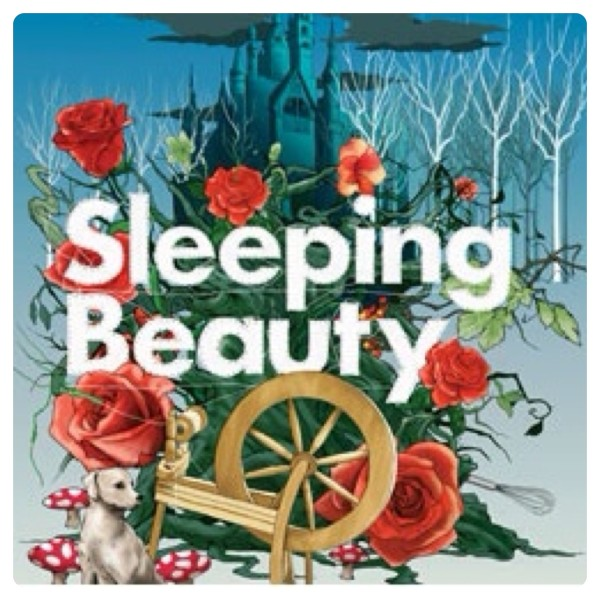 Sleeping Beauty Panto at Park Theatre