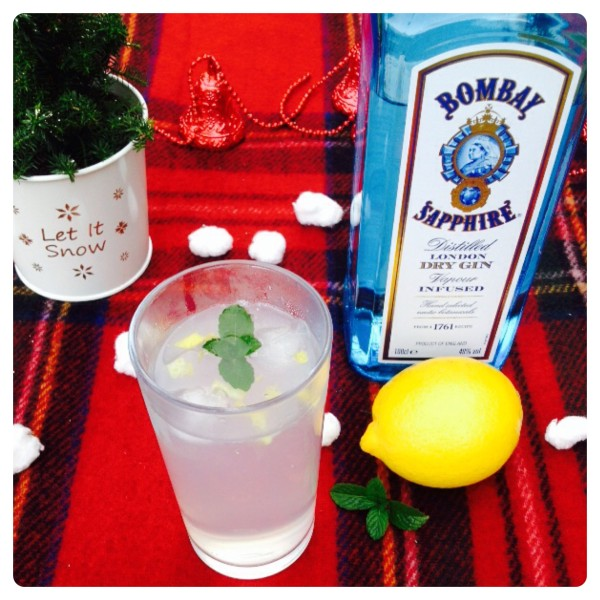 Gin and Tonic with a Festive Twist