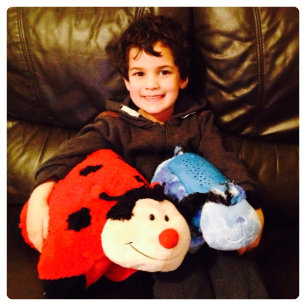 Little Man with Pillow Pets Ms Lady Bug and Camo Dog