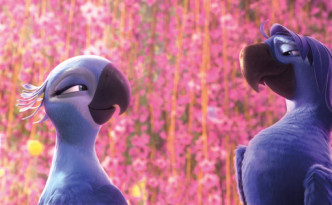 Rio 2 at Cineworld