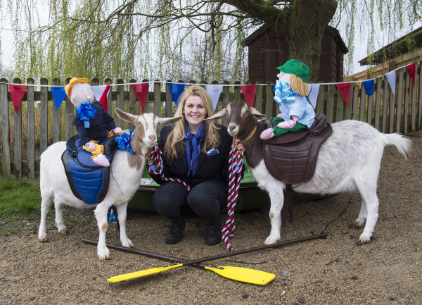 Goat Race at Willows Farm