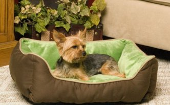 Swell Pets Heated Bed