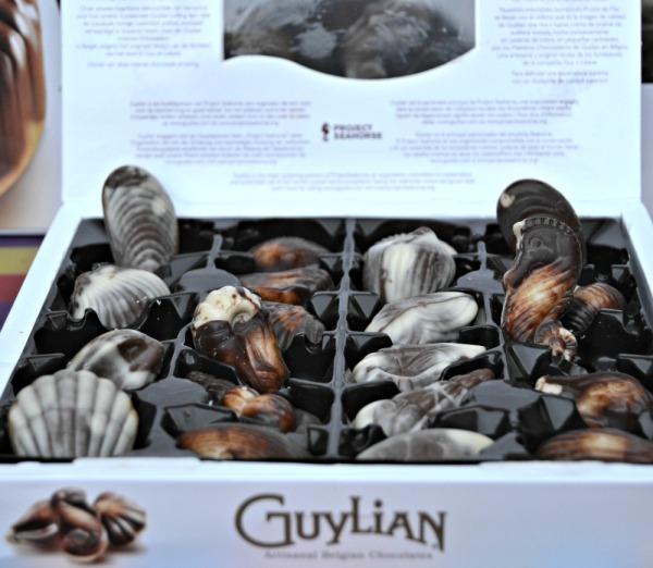 Guylian Belgian Chocolates: Sea Horses and Sea Shells