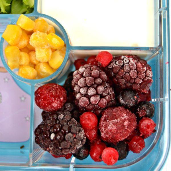 Iceland Lunchbox 9