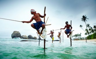 Local fisherman, fishing from stilts in the water at Weligama. Stilt fishermen, fishing from poles in the water. The Sri Lanka image: ©Matt Munro/Lonely Planet